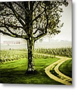 Bordeaux Vineyard Metal Print