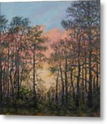 Border Pines Metal Print