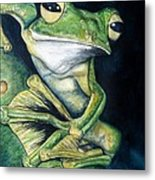 Boreal Flyer Tree Frog Metal Print