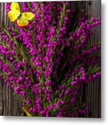 Boronia With Yellow Butterfly Metal Print
