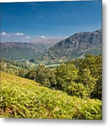 Borrowdale Metal Print