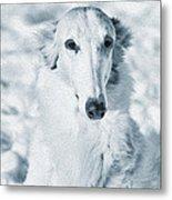 Borzoi Russian Hound Portrait Metal Print by Christian Lagereek