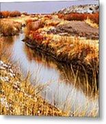 Bosque Canal Metal Print