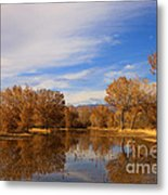 Bosque Del Apache Reflections Metal Print