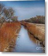 Bosque Del Apache Wetlands- New Mexico Metal Print