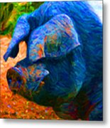 Boss Hog - 2013-0108 - Square Metal Print by Wingsdomain Art and Photography