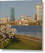 Boston Charles River On A Spring Day Metal Print