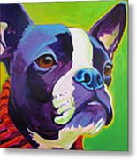 Boston Terrier - Ridley Metal Print by Alicia VanNoy Call