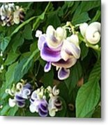 Botanic Garden Flower Metal Print