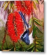 Bottle Brush And Wren Metal Print