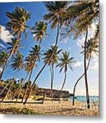 Bottom Bay Beach In Barbados Caribbean Metal Print