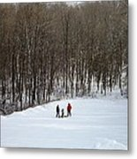 Bottom Of The Sled Hill Metal Print
