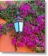 Bougainvillea And Lamp, Mexico Metal Print