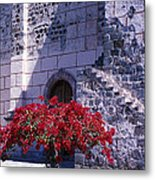 Bougainvillea And Stone Wall Metal Print