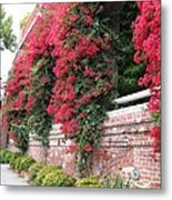Bougainvillea Wall In San Francisco Metal Print