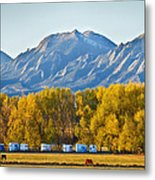 Boulder County Colorado Flatirons Autumn View Metal Print