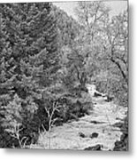 Boulder Creek Winter Wonderland Black And White Metal Print