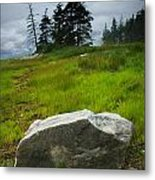 Boulder On The Shore At The Mount Desert Narrows In Maine Metal Print