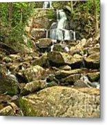 Boulders Logs And Lower Laurel Falls Metal Print