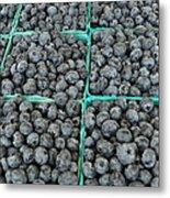 Bounty Of Blueberries Metal Print
