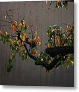 Bouquet From Autumn Leaves.three. Metal Print