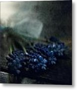 Bouquet Of Grape Hyiacints On The Dark Textured Surface Metal Print