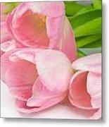 Bouquet Of Pink Tulips. Metal Print