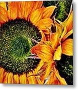 Bouquet Of Sunflowers Metal Print