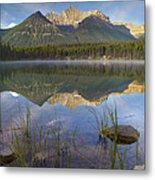 Bow Range And Herbert Lake Banff Metal Print