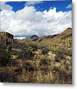 Bowen Homestead Ruins Metal Print
