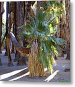 Bowing Palm Metal Print