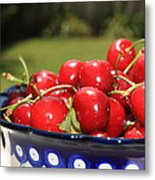 Bowl Of Cherries In The Garden Metal Print