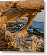 Bowling Ball Beach Framed In Driftwood Metal Print
