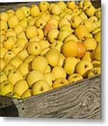 Box Of Golden Apples Metal Print