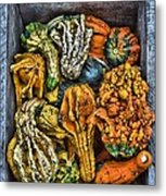 Box Of Gourds Metal Print