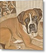 Boxer Dog George Metal Print by Faye Symons