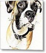Boxer Dog Poster Metal Print