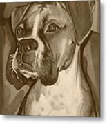 Boxer Dog Sepia Print Metal Print by Robyn Saunders
