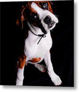 Boxer Pup Metal Print by Jt PhotoDesign