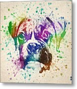 Boxer Splash Metal Print