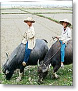 Boys On Water Buffalo In Countryside-vietnam Metal Print