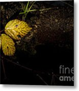 Bramble Tree Metal Print