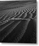 Branch Out In The Desert Metal Print