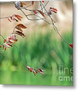 Branches And Leaves Metal Print