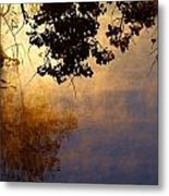 Branches Misty Pond Sunrise Metal Print