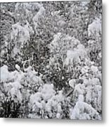 Branches Of Snow Metal Print