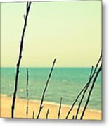 Branches On The Beach Metal Print