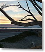 Branches Over The Beach Metal Print