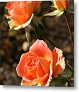 Brass Band Roses In Autumn Metal Print