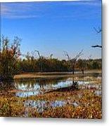 Brazos Bend Swamp Metal Print